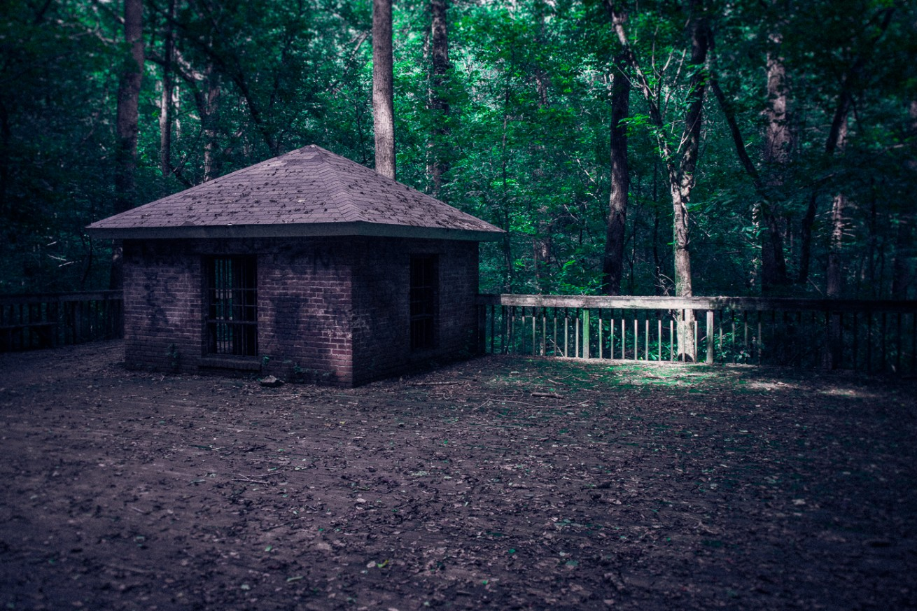 Dark Shack in the Woods