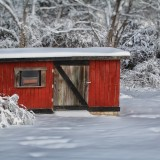 Red Snow Shed
